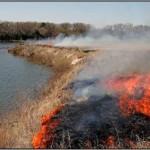 Prescribed Fire Advanced Topic Workshop