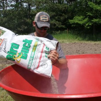Specialty Seed Mixes
