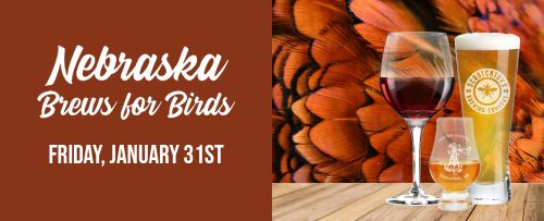 brews-for birds