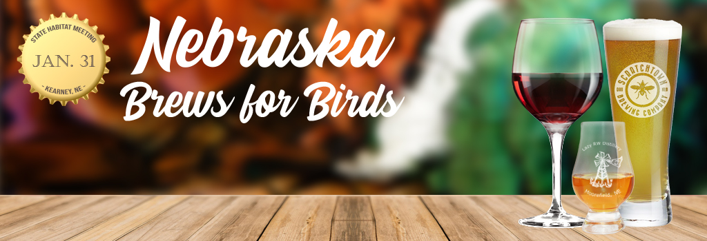 Brews for Birds