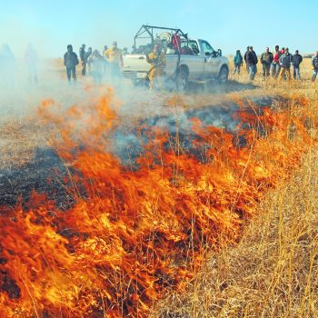 Prescribed Fire Advanced Topic Workshop