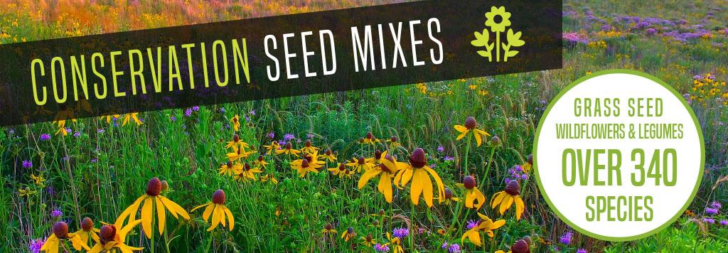 Seed Program